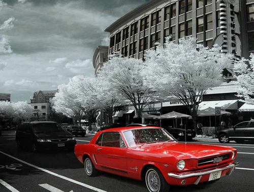 Red Car with Black and White Scenery