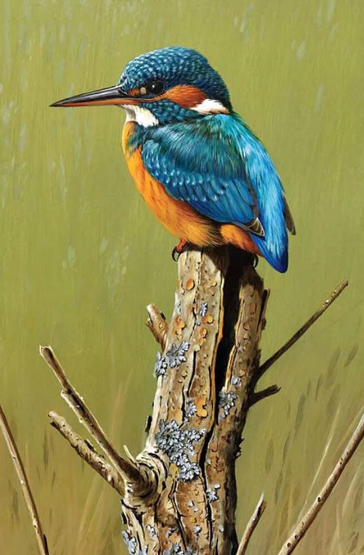Colored Bird Sitting on Bough - Diamonds Painting