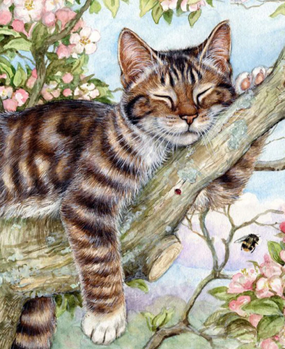 Cute Cat Sleeping on Boughs - 5D Diamond Painting