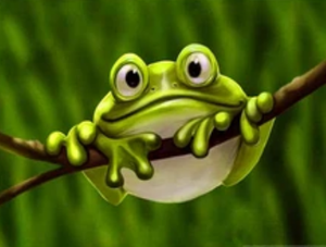 Cute Frog Hanging on Tree - Paint by Diamond
