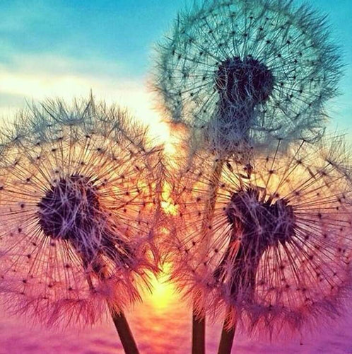 Beautiful Dandelions Painting Kit