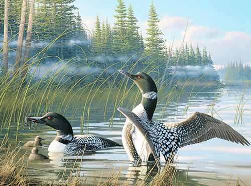 Duck in Lake 5D Diamond Art Painting