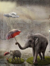 Load image into Gallery viewer, Elephant with Calf - 5D Diamond Painting