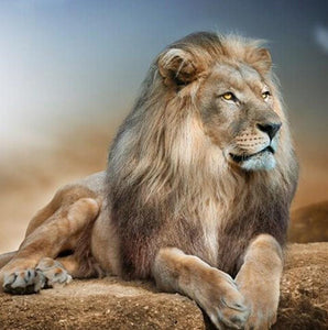 Lion Diamond Painting Kit