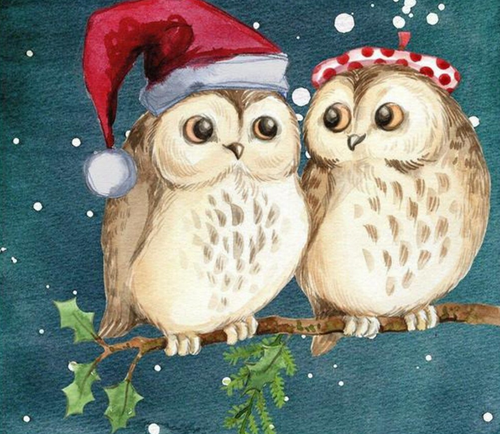 Owls at Christmas - Paint by Diamonds