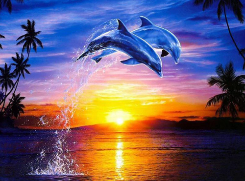 Scenic Sunset and Dolphins Jumping - Diamond Painting