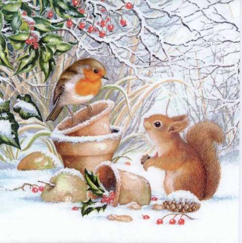 Squirrel and Sparrow Bird - Diamond Art Kit