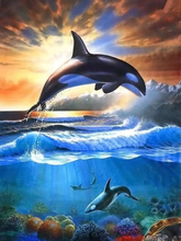 Load image into Gallery viewer, Sunset Whales Paint by Numbers