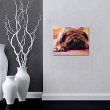 Load image into Gallery viewer, Lazy Dog - Special Diamond Painting
