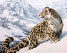 Load image into Gallery viewer, Snow Leopard on Snowy Mountain