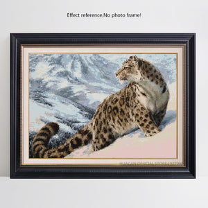 Snow Leopard on Snowy Mountain