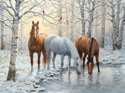 Beautiful Horses in Winter