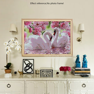 Beautiful Swan Couple & Pink Roses