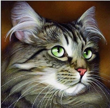 Load image into Gallery viewer, Cute Cat with Beautiful Eyes Diamond Painting Kit
