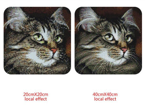 Cute Cat with Beautiful Eyes Diamond Painting Kit