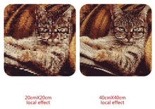 Load image into Gallery viewer, Amazing Cat Reading Newspaper Diamond Art Kit