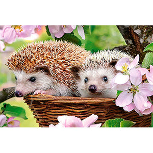Adorable Hedgehog Couple in the Flowers