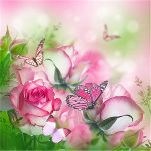 Butterflies on Beautiful Roses