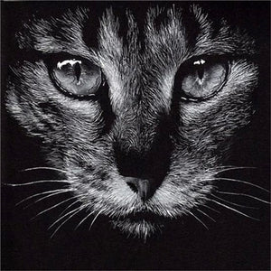 black white cat diamond art