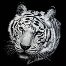 Load image into Gallery viewer, tiger diamond by numbers
