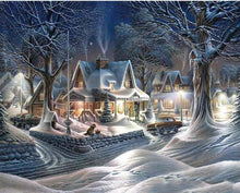 Load image into Gallery viewer, winter paint by diamonds kit