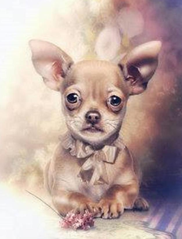 dog painting by diamonds