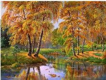 Load image into Gallery viewer, Autumn Forest Scenery Painting