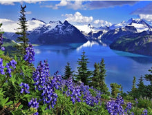 Load image into Gallery viewer, Natural Beautiful Blue Lake