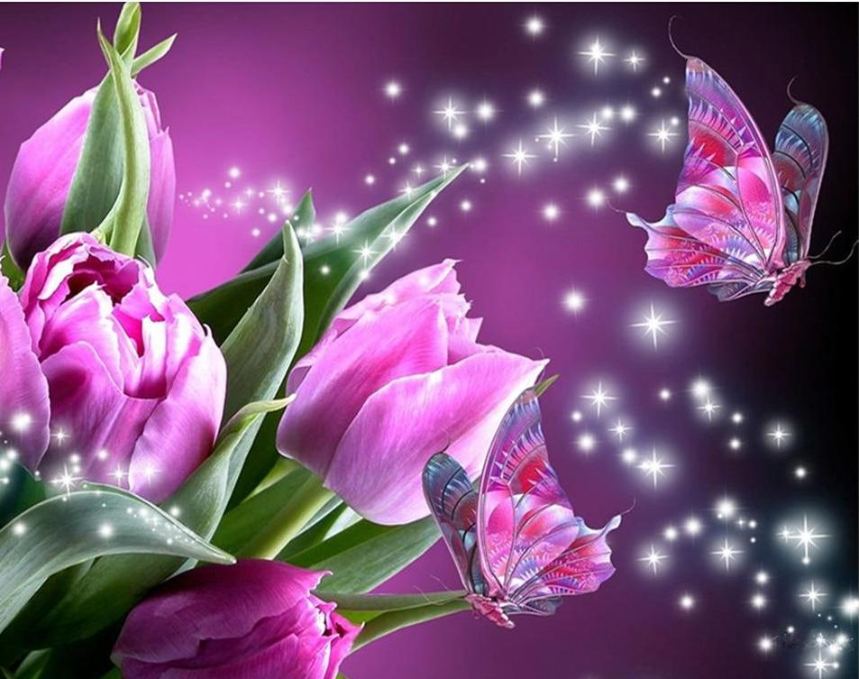 Beautiful Pink Rose & Butterfly