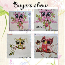 Load image into Gallery viewer, Mother Day Owl Paintings