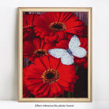 Load image into Gallery viewer, White Butterfly on Beautiful Red Flowers