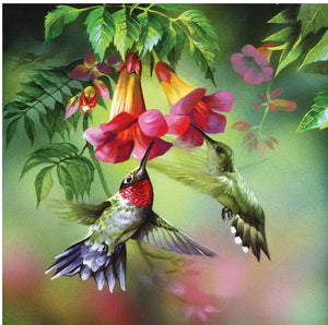 Hummingbird and Flowers Paint with Diamonds