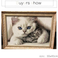 Load image into Gallery viewer, Adorable Little Cats