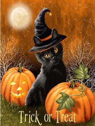 Black Cat & Pumpkin
