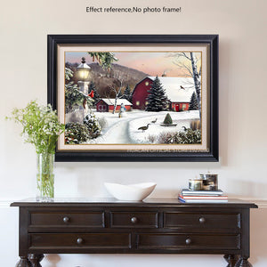 Wonderful Winter Scenery Diamond Art