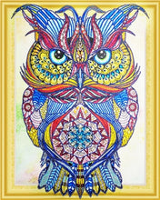 Load image into Gallery viewer, owl diamond art kit