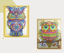 Load image into Gallery viewer, Special Serious Owl Diamond Art Kit