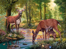 Load image into Gallery viewer, deer paint with diamonds