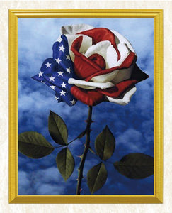 American Flag & Flower Diamond Painting