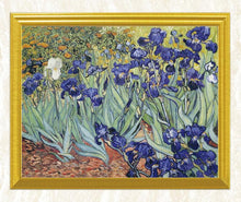 Load image into Gallery viewer, Irises Diamond Art Kit