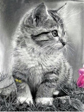 Load image into Gallery viewer, Beautiful Cats  Diamond Painting Kits