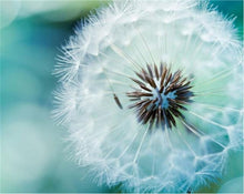 Load image into Gallery viewer, Dandelion Diamond Art Kit