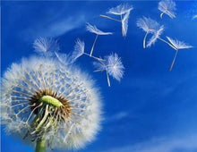 Load image into Gallery viewer, Dandelion Flowers Painting Kit