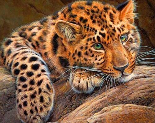 Leopard diamond painting kit