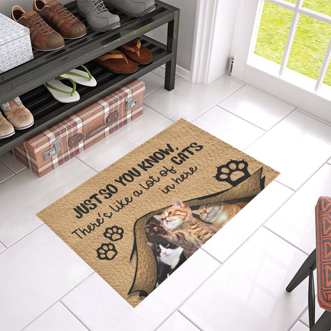Qhn 5 You Know Cat Doormat