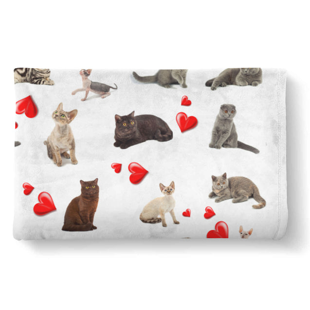 Cat Heart Blanket