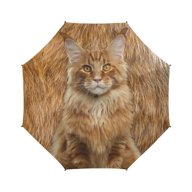 TD 6 Maine Coon Cat Fur Texture Umbrella