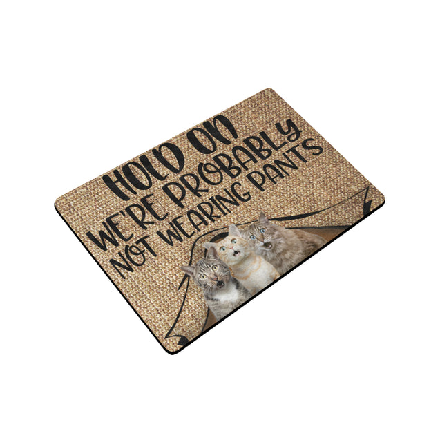 Mt Hold On We're Probably Not Wearing Pants Cat Door Mats 24 x 16