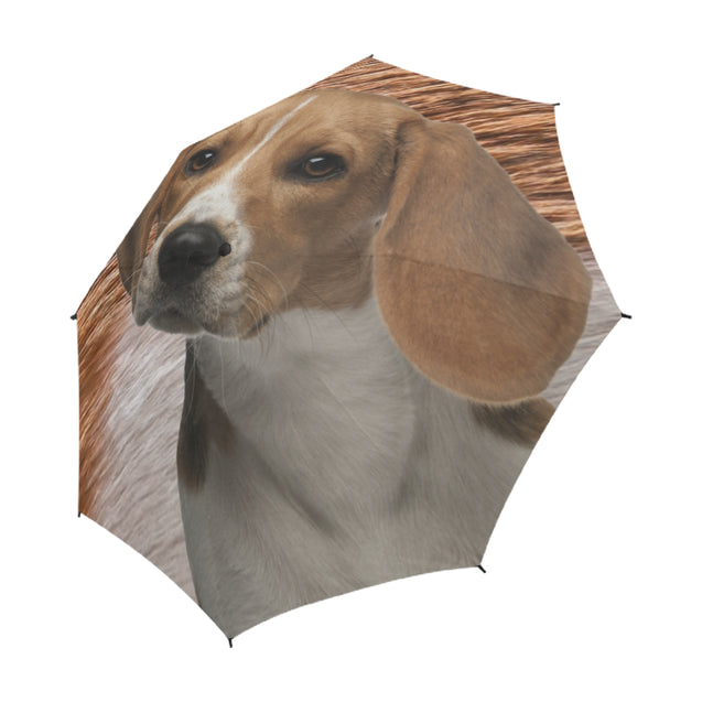 TD 6 Beagle Fur Texture Umbrella