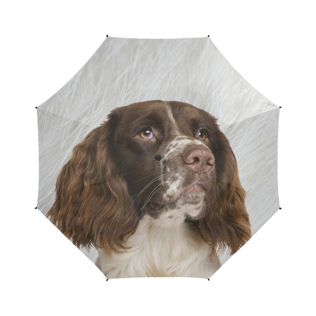 TD 6 English Springer Spaniel Fur Texture Umbrella